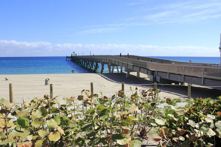 Pier in deerfield beach matt smith for Deerfield beach fishing pier